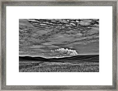 Wheat Fields In The Palouse Framed Print by David Patterson