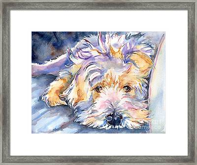 Wheaten Terrier Painting Framed Print by Maria's Watercolor