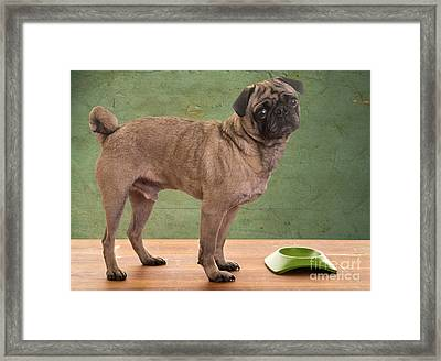 When Is Dinner? Framed Print by Edward Fielding