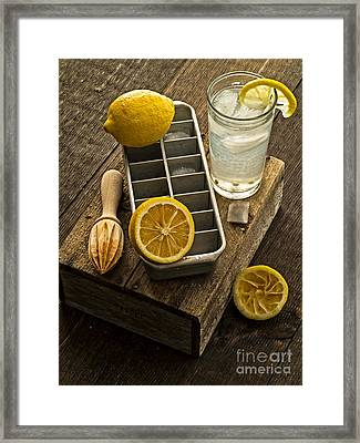 When Life Gives You Lemons... Framed Print by Edward Fielding