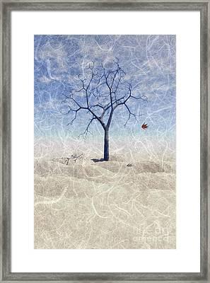 When The Last Leaf Falls... Framed Print by John Edwards