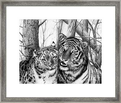 When Two Hearts Collide Framed Print by Peter Piatt