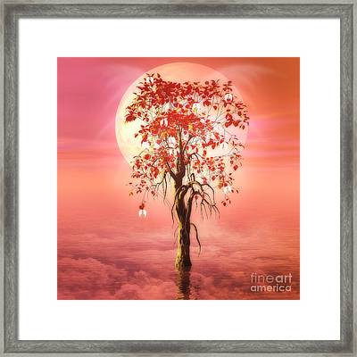 Where Angels Bloom Framed Print by John Edwards