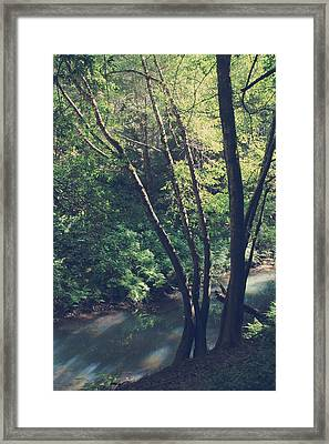 Where It's Shady Framed Print by Laurie Search