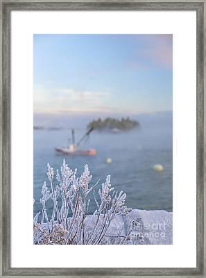Where Morning Glories Grow Framed Print by Evelina Kremsdorf