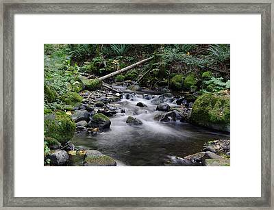 Where Solace Begins Framed Print by Jeff Swan