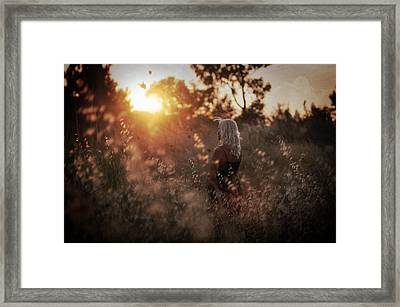 Where We Start Framed Print by Taylan Soyturk