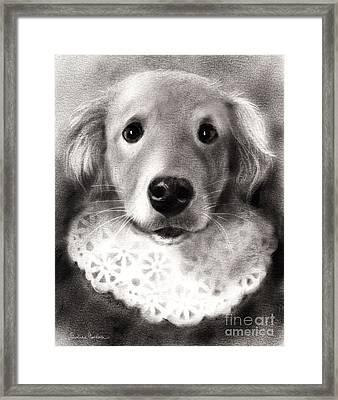 Whimsical Labrador Retriever In A Costume Framed Print by Svetlana Novikova