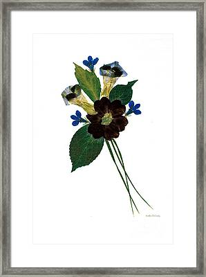 Whimsy Framed Print by Kathie McCurdy