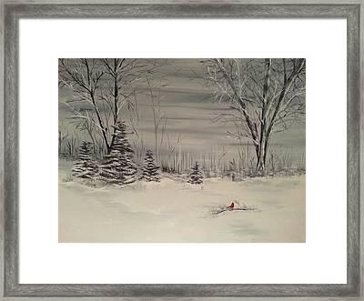 Whipple Lake Framed Print by Valorie Cross