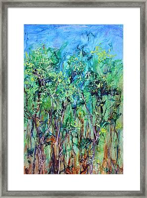 Whirlwoods Framed Print by Regina Valluzzi