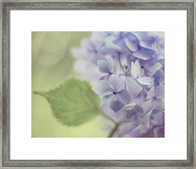 Whisper Framed Print by Amy Tyler