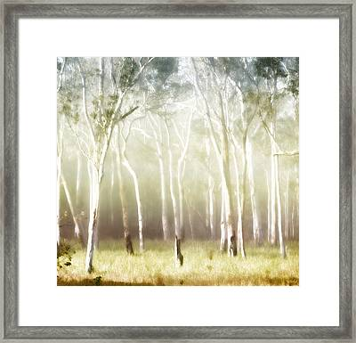 Whisper The Trees Framed Print by Holly Kempe