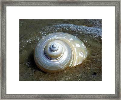 Whispering Tides Framed Print by Karen Wiles