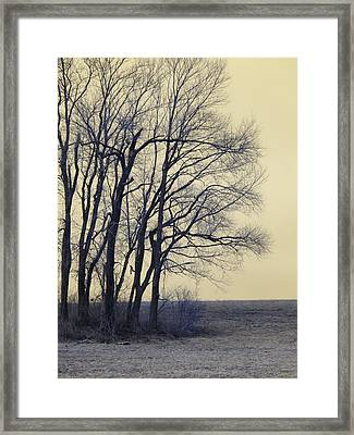 Whispers From The Past Framed Print by Luke Moore
