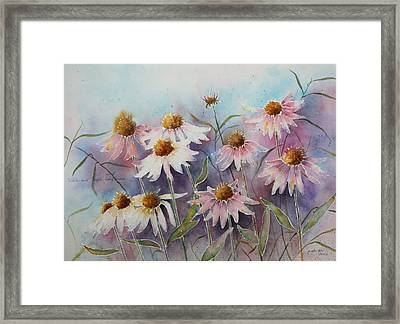 White And Pink Coneflowers Framed Print by Patsy Sharpe