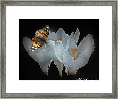 White Crocus With Monarch Butterfly Framed Print by Mikki Cucuzzo