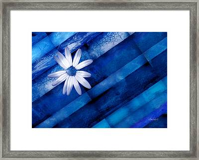 White Daisy On Blue Two Framed Print by Ann Powell