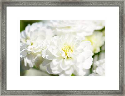 White Flower Macro Framed Print by Toppart Sweden