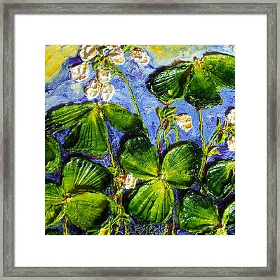 White Flowers Shamrocks Framed Print by Paris Wyatt Llanso