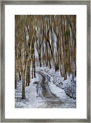 White Forest Framed Print by Kathy Jennings