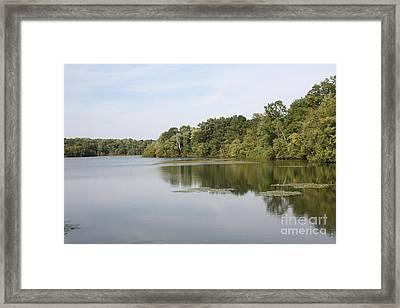 White Heron Lake Poconos Pa II Framed Print by John Telfer