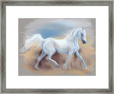 White Horse Framed Print by MM Anderson