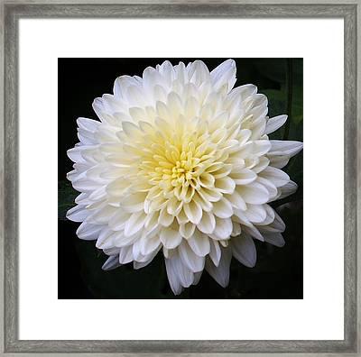 White Lighting Framed Print by Bruce Bley