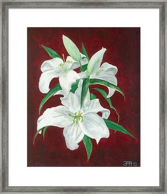 White Lily Dark Red Background  Framed Print by Jekaterina Mudivarthi