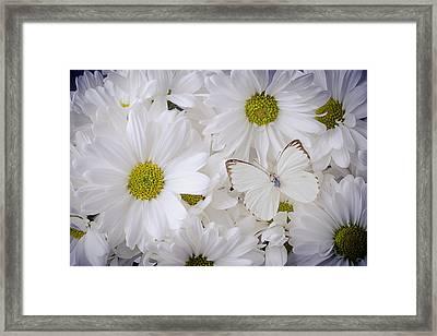 White On White Framed Print by Garry Gay