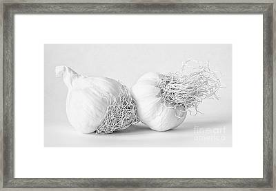 Two Bulbs Of Garlic Framed Print by Janet Burdon