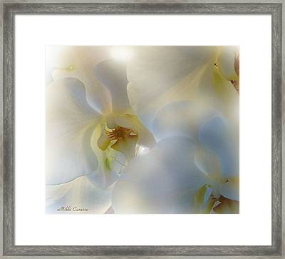 White Orchids Framed Print by Mikki Cucuzzo