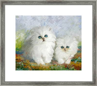 White Persian Kittens  Framed Print by Catf