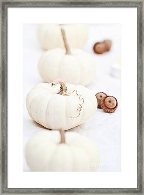White Pumpkins And Acorns Framed Print by Stephanie Frey