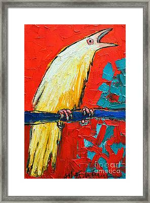 White Raven's Scream Framed Print by Ana Maria Edulescu