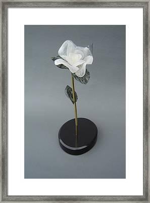 White Rose Framed Print by Leslie Dycke