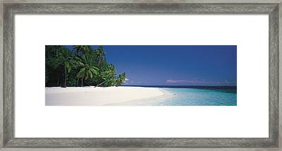 White Sand Beach Maldives Framed Print by Panoramic Images