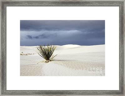 White Sands Dark Sky Framed Print by Bob Christopher