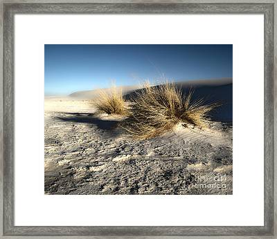 White Sands New Mexico Among The Dunes Framed Print by Gregory Dyer