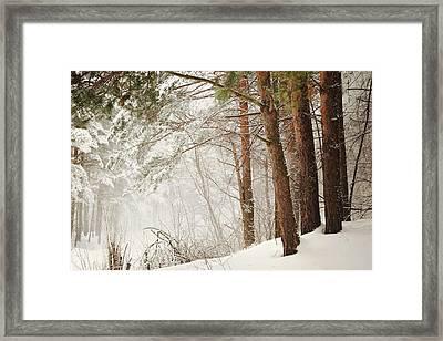 White Silence Framed Print by Jenny Rainbow