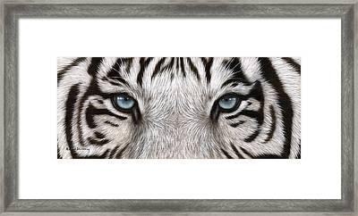 White Tiger Eyes Painting Framed Print by Rachel Stribbling