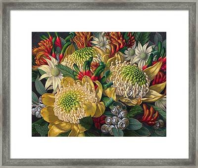 White Waratahs Flannel Flowers And Kangaroo Paws Framed Print by Fiona Craig