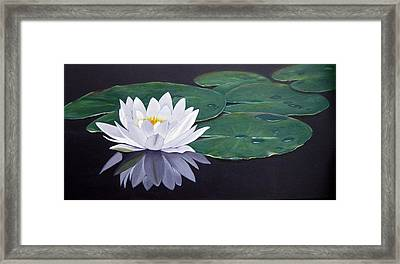 White Water Lilly Framed Print by Birgit Coath