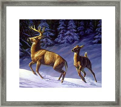 Whitetail Deer Painting - Startled Framed Print by Crista Forest