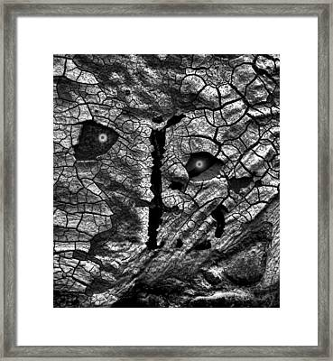 Who Hides Behind The Mask Framed Print by Steve Taylor