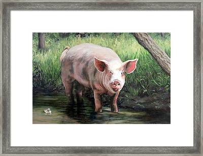 Wilbur In His Woods Framed Print by Sandra Chase
