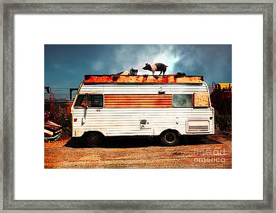 Wilbur The Pig Goes On Vacation 5d22705 Framed Print by Wingsdomain Art and Photography
