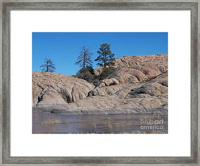 Willow Lake Number One Color Framed Print by Heather Kirk
