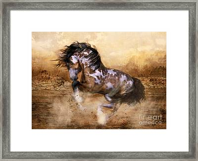 Wild And The Free Framed Print by Shanina Conway