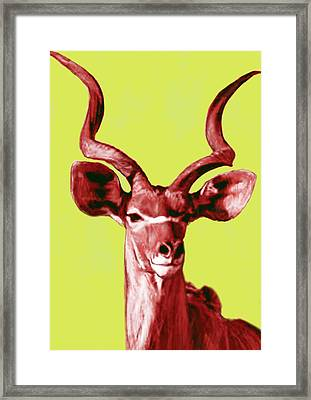 Wild Animal Stylised Pop Art Drawing Potrait Poser Framed Print by Kim Wang